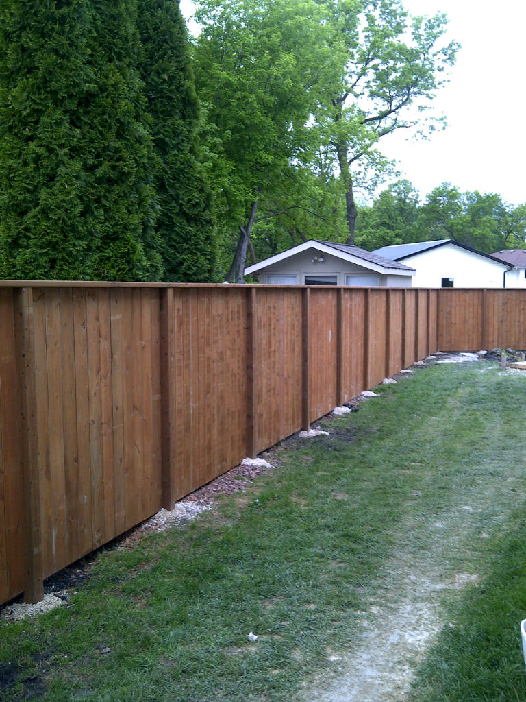 Beautiful Low cost Fence option